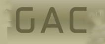 GAC auditors ltd